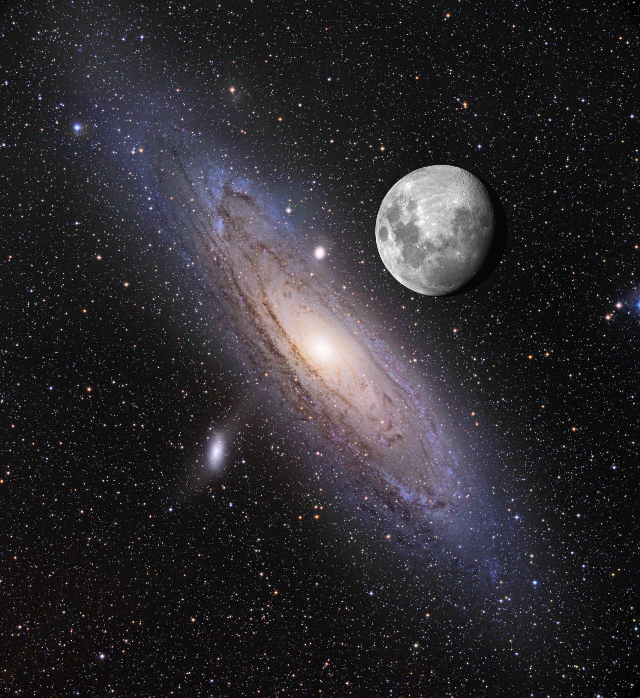 双眼鏡で見る秋の星空・M31(ア...